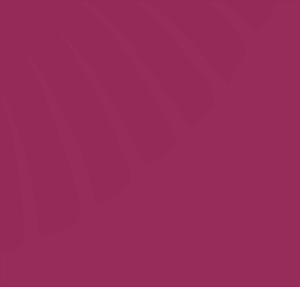 Franz Pfister AG Logo